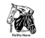 Thrifty Horse